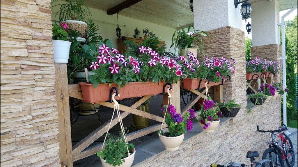 Цветы на веранде